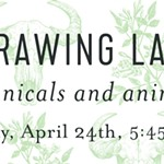 Drawing+Lab%3A+Botanicals+and+Animals